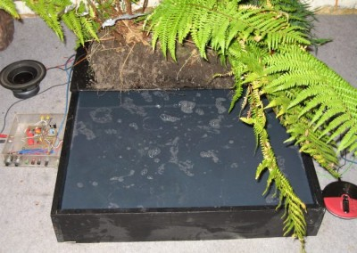 Electronics with Plants